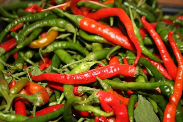 Cayenne Long Slim Pepper Seeds