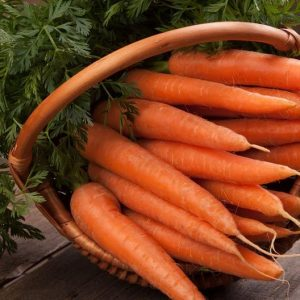 non-gmo heirloom carrot seeds