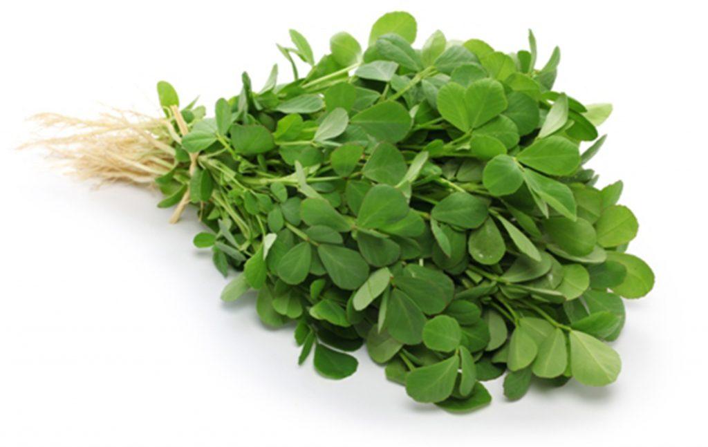 Fenugreek | Herbs as Medicine
