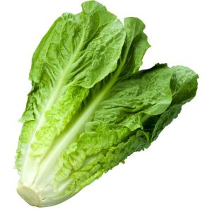 romaine lettuce seeds