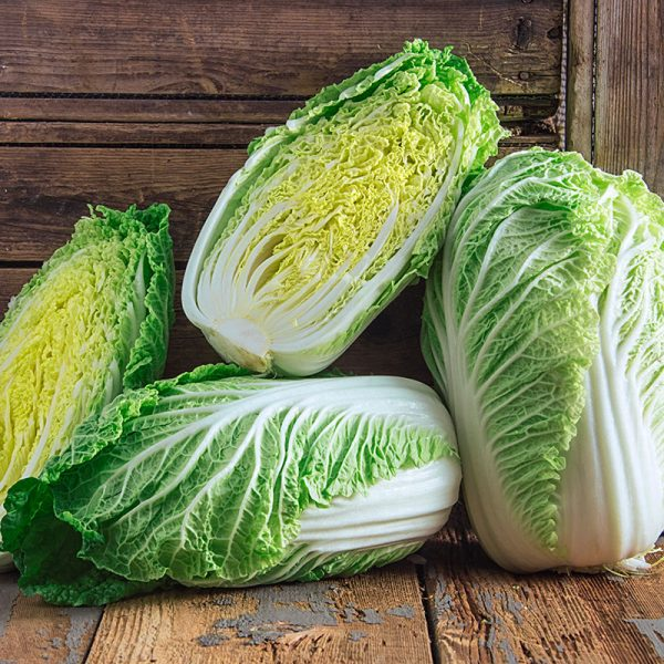 napa chinese cabbage seeds