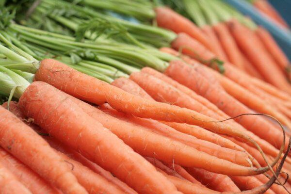 tendersweet carrot seeds