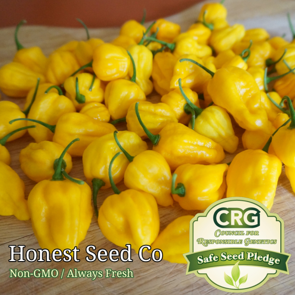 lemon yellow habanero pepper seeds