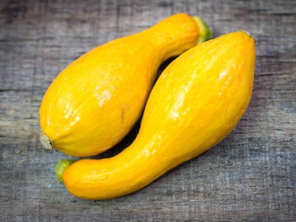 yellow squash seeds