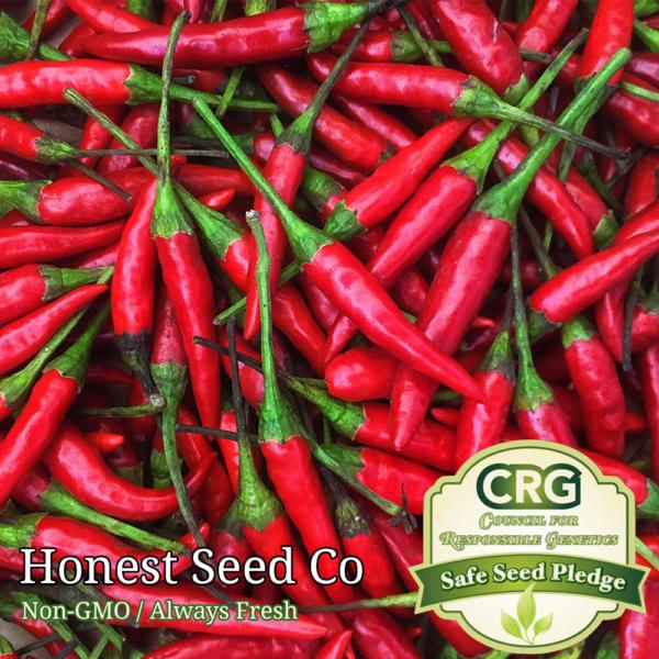 thai pepper seeds